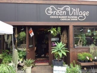 藤枝市「greenvillage」